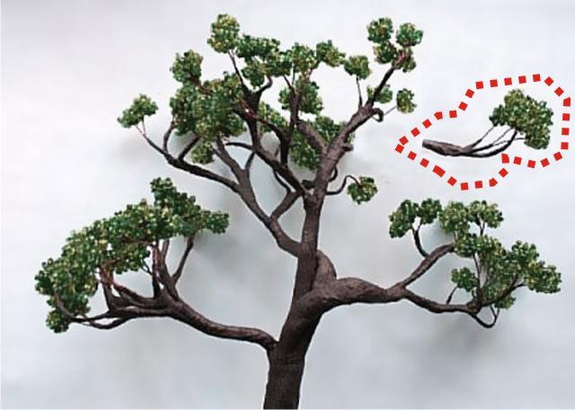 tree and true