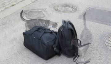 а что у вас в сумках