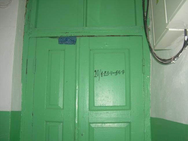DSCN7331
