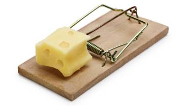 Mousetrap with cheese incentive