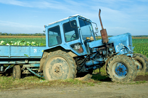 tractor_in_Belarus