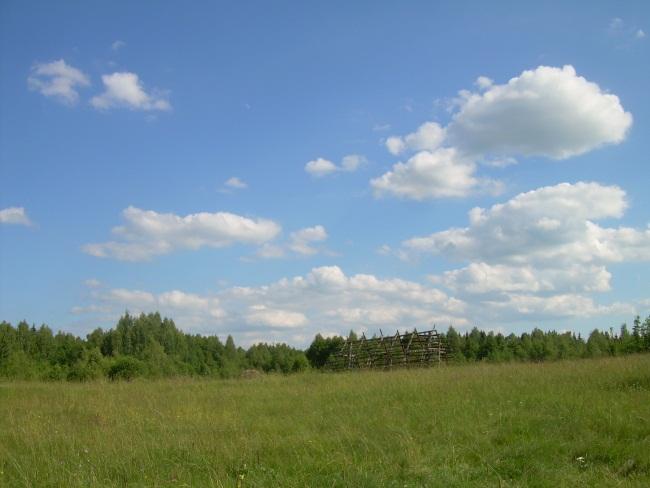 Шеляги. Лето 2014 года.