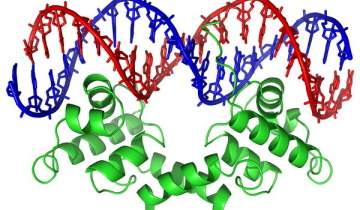 dna_history_05