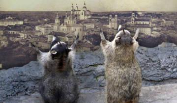 Витебск Мекка Туризм Панорама