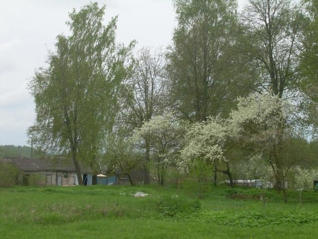 Огороды и сады - непозволительное удовольствие для жителей городских многоэтажек.