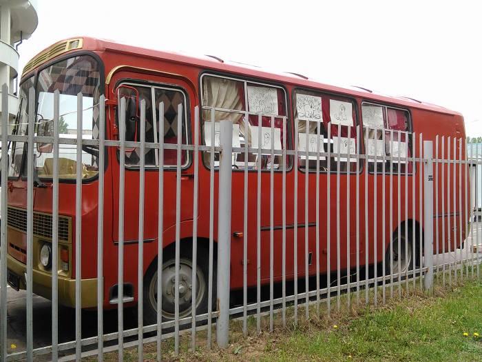 Интересный автобус оформлен рисунками со знаменитым котом