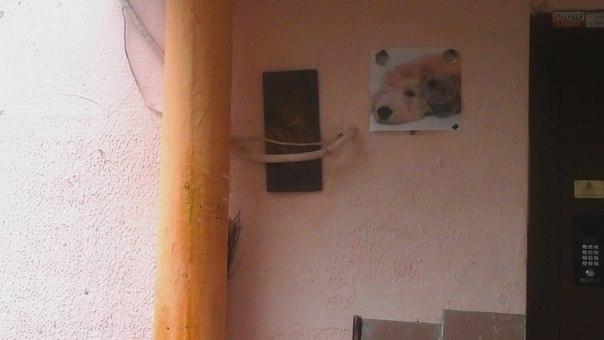 А на стене веселые картинки, чтоб было уютней.