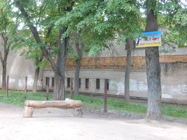 Площадка у школы №31
