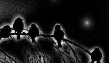 В короткие Воробьиные ночи времени отдыхать совсем мало, поэтому, чтобы не терять время даром, крестьяне шли на сенокос пораньше. Источник: polsergmich.blogspot.com