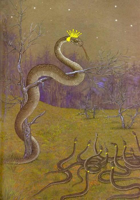 Ужиный царь. Источник: www.bestiary.us