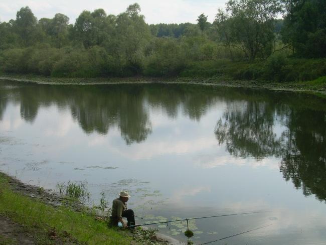 Река Сож хоть и мелкая, но рыбой богата.