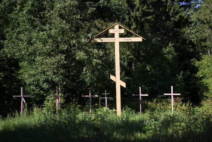 Кресты возле деревни Пояи. Фото Дмитрия Довгулевоча