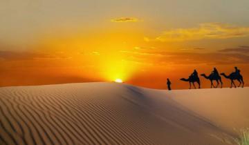 tunisie_-_balades_en_chameau_dans_le_desert