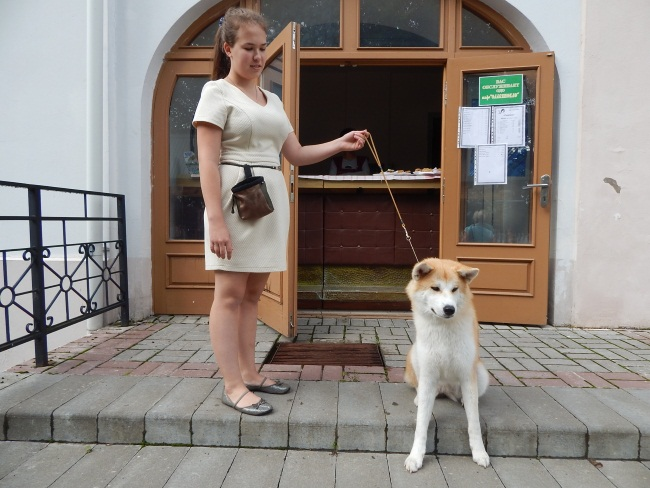 Хатико - пес преданный.