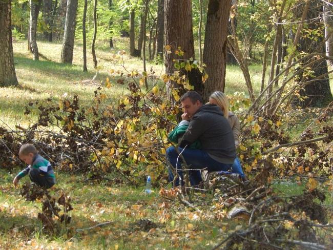В лесу встречаются не только отдыхающие