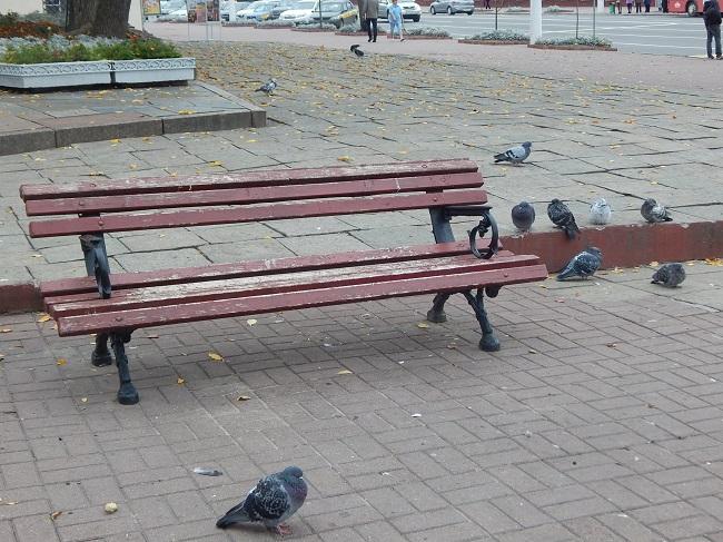 Голубям тут может и удобно, а вот людям?
