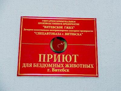 Фото из группы приюта в социальной сети Вконтакте