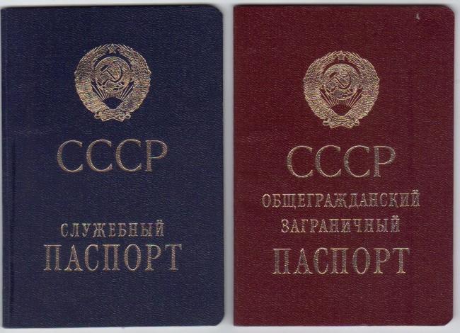 образец паспорта лошади