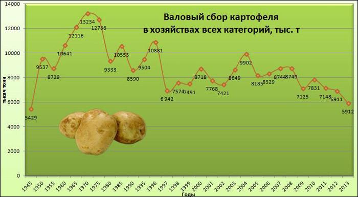 Валовый сбор картофеля в Беларуси
