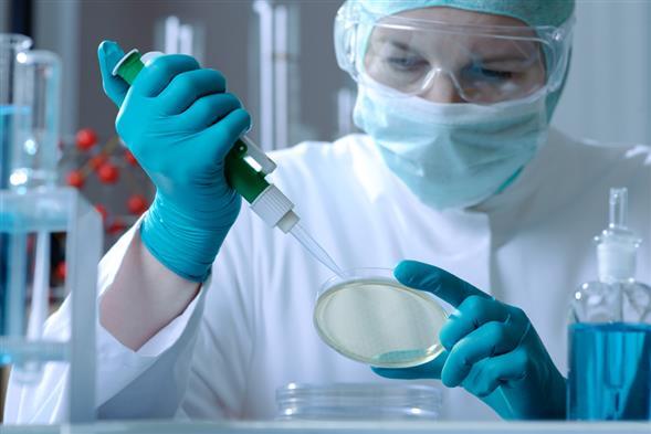Эпидемиологи и гигиенисты занимаются профилактикой инфекций.