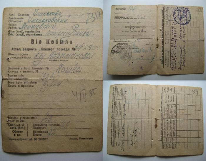 паспорт кобылы