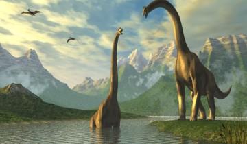 Динозавры - наши предки? Фото mirfactov.com