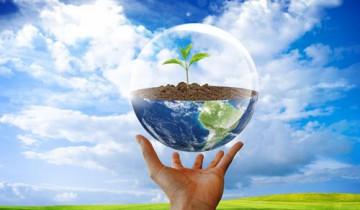 """Защита окружающей среды приоритетна для """"Экспресс-ООН"""". Фото tonb.ru"""