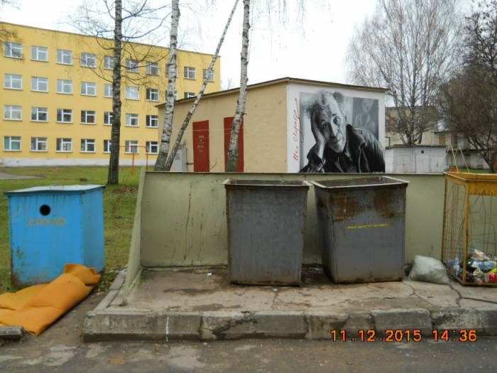 Контейнеры во дворе дома 34 по улице Суворова