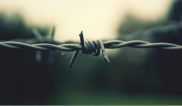 Тюрьма работа - обложка