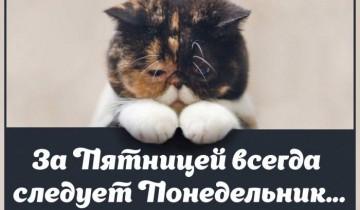 Фото img0.joyreactor.cc
