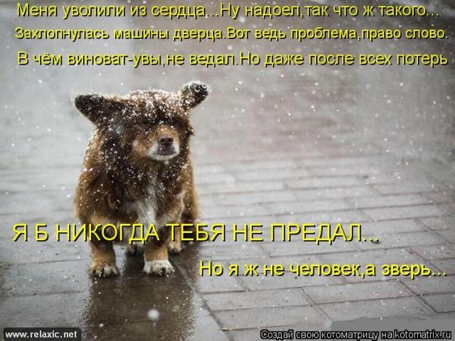 kotomatrix_00023