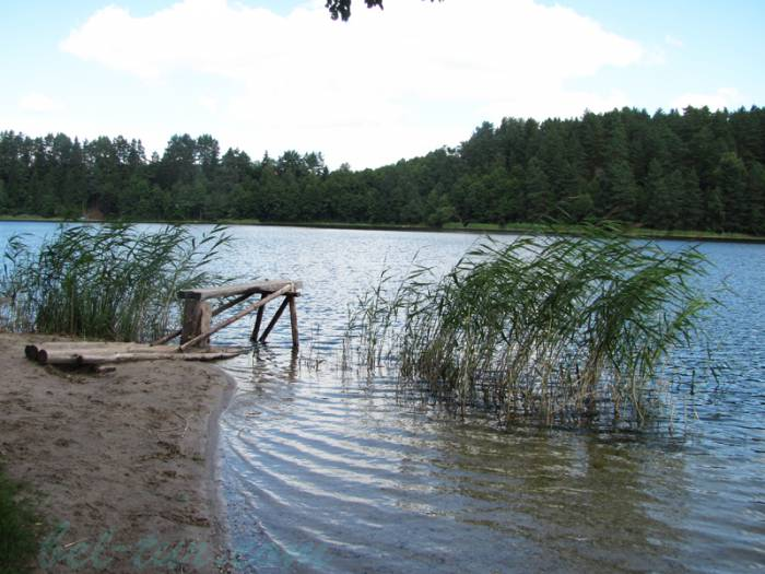 Озеро охват фото иссиня-черные цветочные