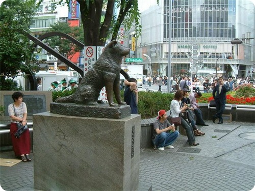 памятник Хатико Источник: zoopictur