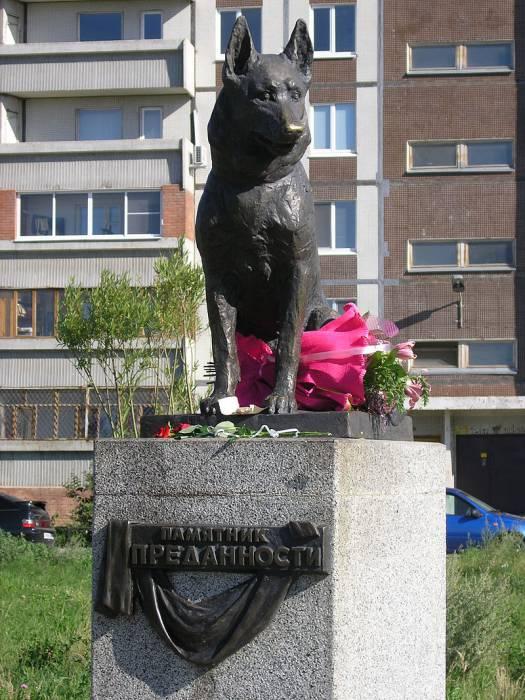 памятник псу Константину в Тольятти Источник:wikipedia.org