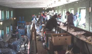 Сортировка мусора на витебской свалке. Источник:nefco.org