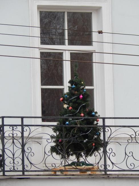 """На витебских балконах """"расцвели"""" елки"""