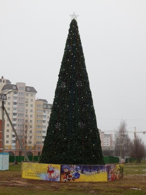 """Новогодняя ель у кинотеатра """"Бригантина"""""""