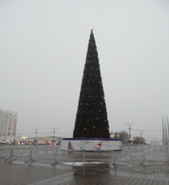 Елочка на площади Ленина утром 18 декабря