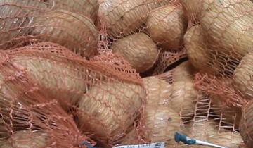 Картошка из Грина - самая экологичная?