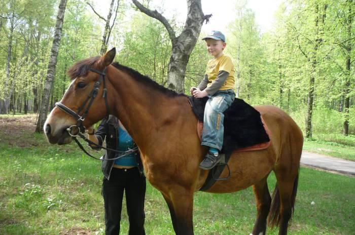 Катание на лошадях очень нравится детям.
