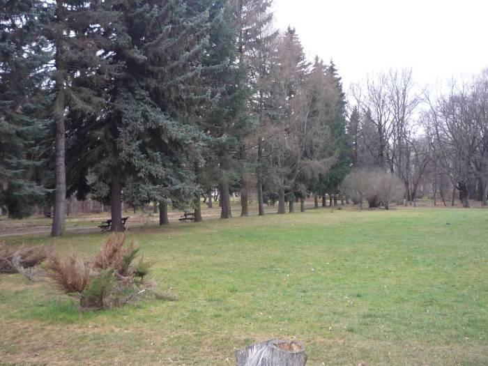 Ботанический сад — глоток свежего воздуха в центре города.
