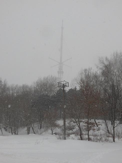 Витебская телевышка. Вид с улицы Некрасова зимой