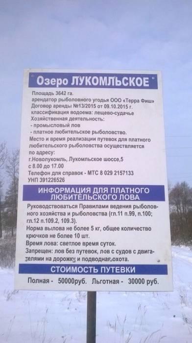 """Фото из группы города Новолукомля в социальной сети """"Вконтакте"""""""