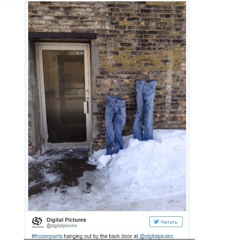 Замороженные штаны на заднем дворе Digital Pictures