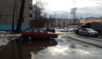 лужи, Витебск, оттепель
