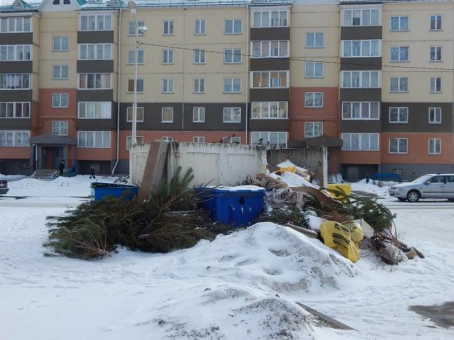мусорка зимой в Билево