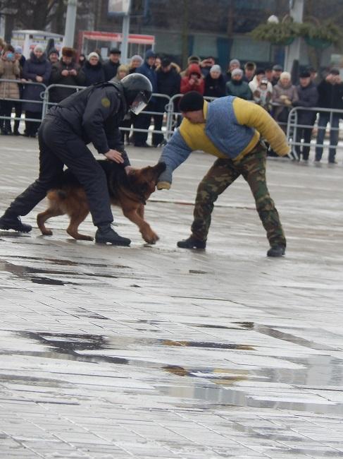 милицейский пес