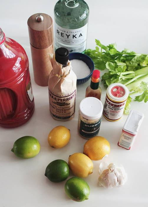diy-bloody-mary-mix-gift-set-3