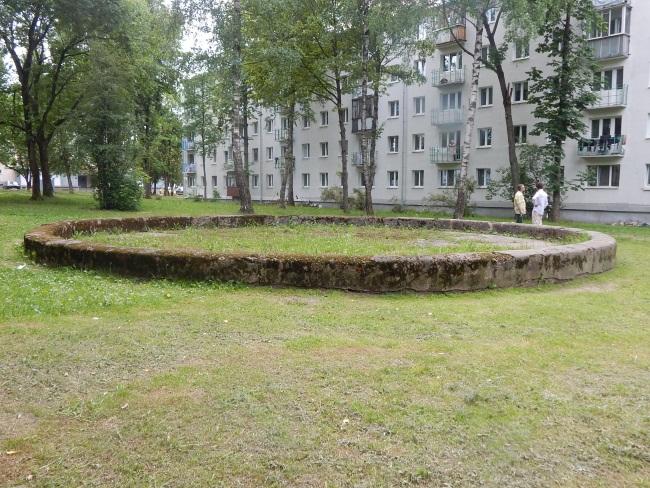Круги на траве. Фото Евгении Москвиной