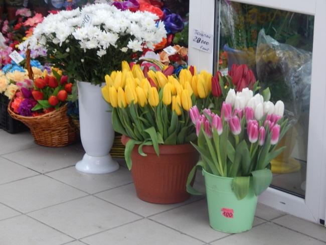 Недорогой букет из тюльпанов минск, магазин цветов тюльпан вологда